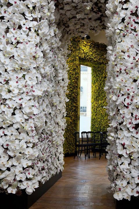 Raff Simmons Million Flowers Flower Wall Floral Wall