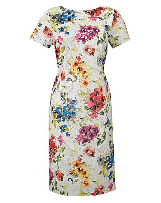 Womens Dress Lace Shift Short Sleeve Above The Knee Floral JD Williams