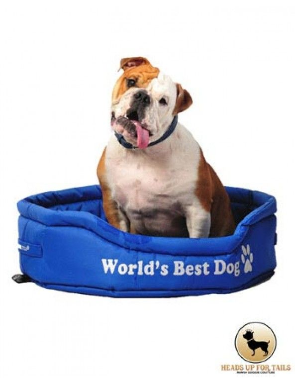 This special bed is for the World's Best Dog :) Order this bed for your baby here :http://www.headsupfortails.com/dog-bedding/world-best-dog-bed-blue-red.html #dogs #worldsbestdog #love #dogbeds #smalldogs #headsupfortails #huft