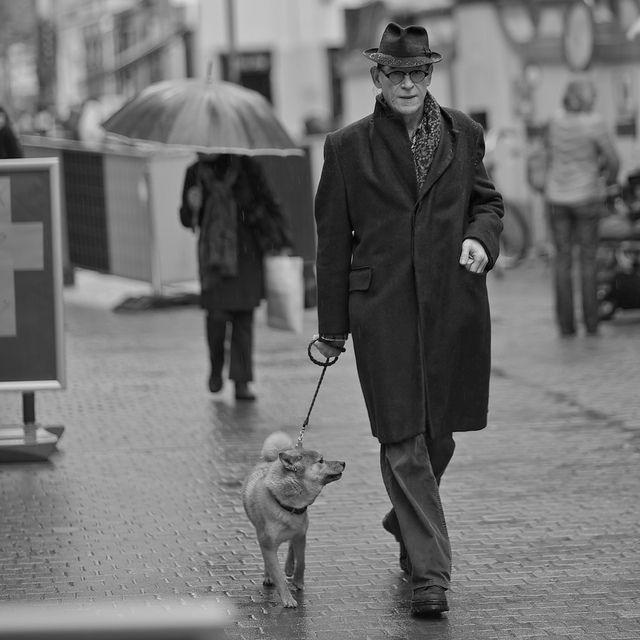最近話題のお散歩代行サービスって Dogtrend 犬 散歩 犬 わんちゃん