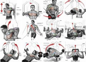 Chest Expert Workout Plan