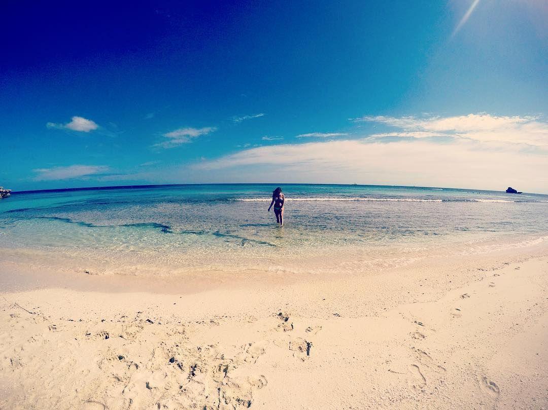 #takemeback #australia #perth #rottnestisland #rottolife #beachbum #saltlife #summer #soul #travel #paradise by kentuckylll http://ift.tt/1L5GqLp