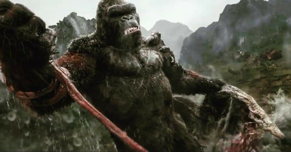 Pin By Kbrown On Kong In 2021 Movie Monsters Monster Godzilla