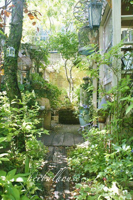 小径から見たパティオガーデン 小さな幸せ 庭 庭園の小道 ガーデンプラン