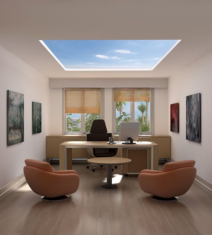 Interior Designmodern Home Office: Professional Office Decorating Ideas