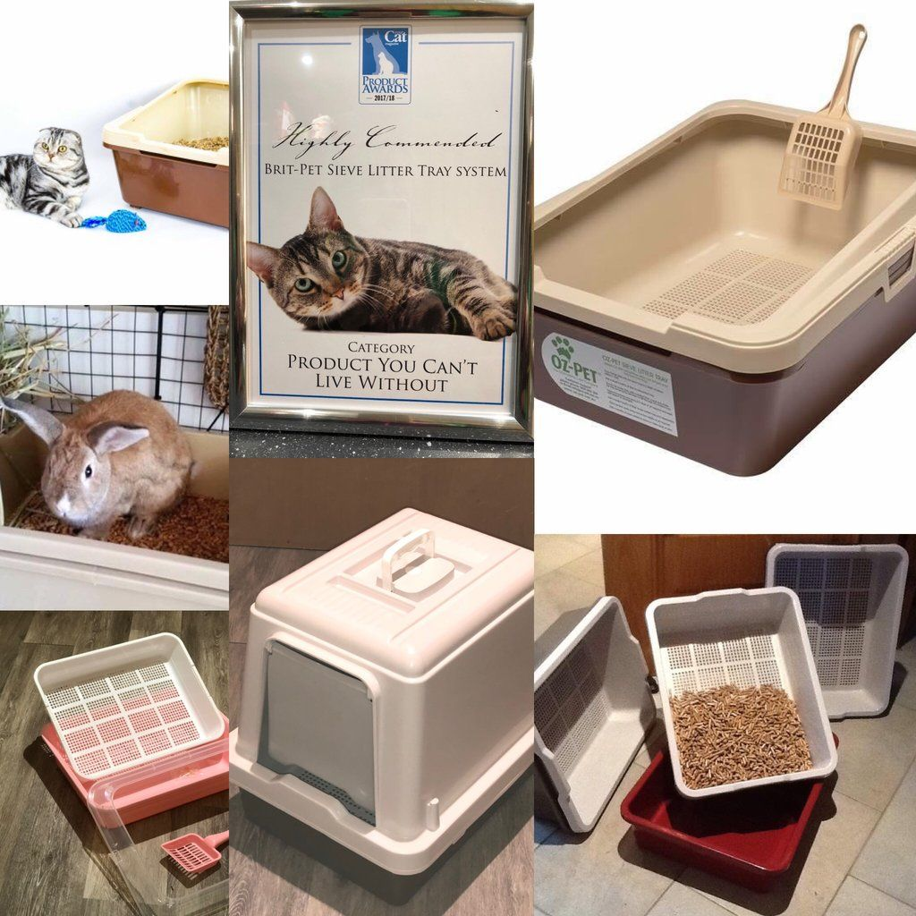 TIME TO GO ECO FRIENDLY IN 2019 Cat litter tray, Litter