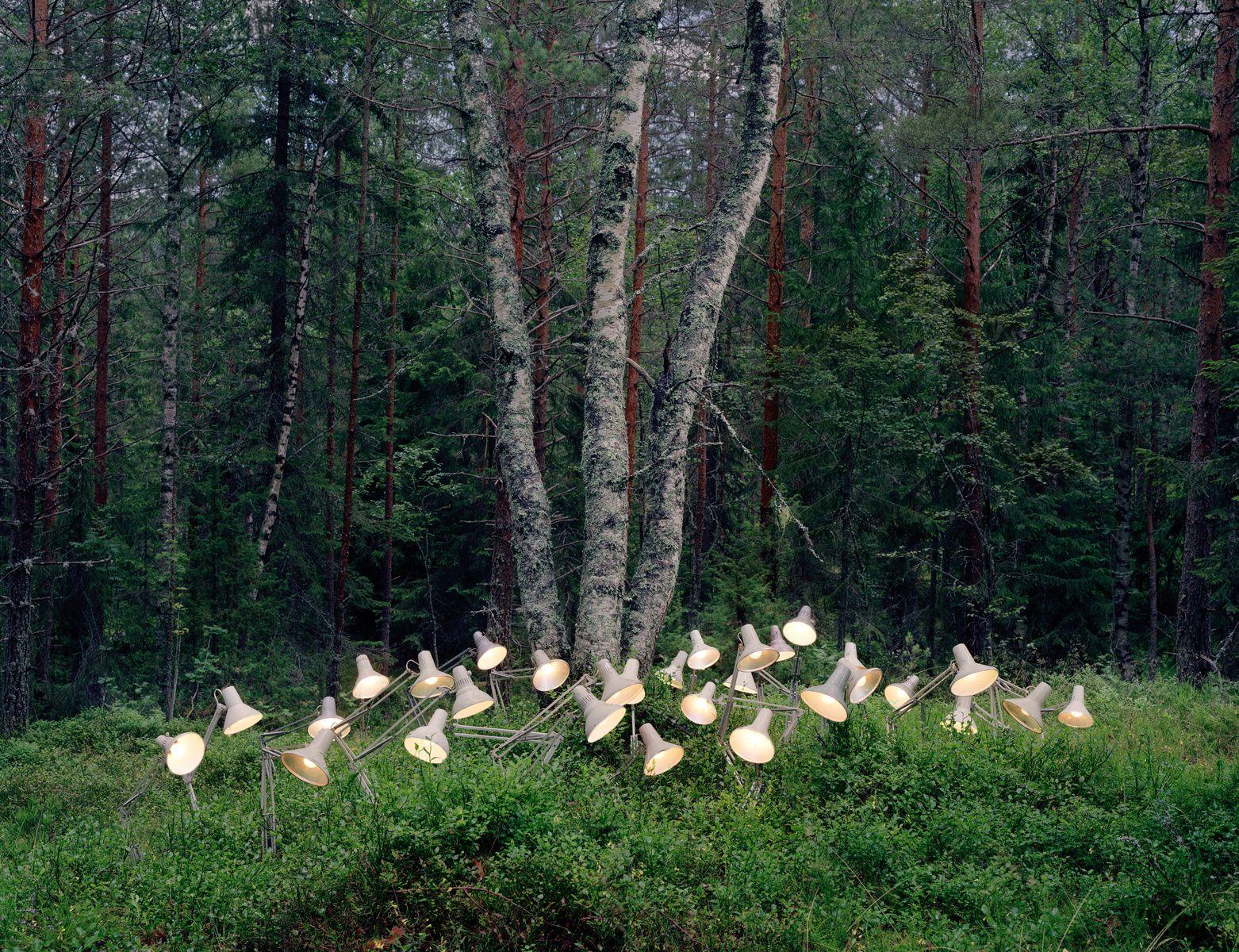 Rune Guneriussen,Fake state of interdependence, 2012