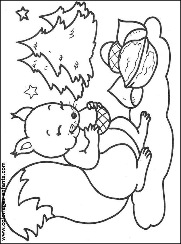 Coloriage Écureuil à colorier - Dessin à imprimer ...