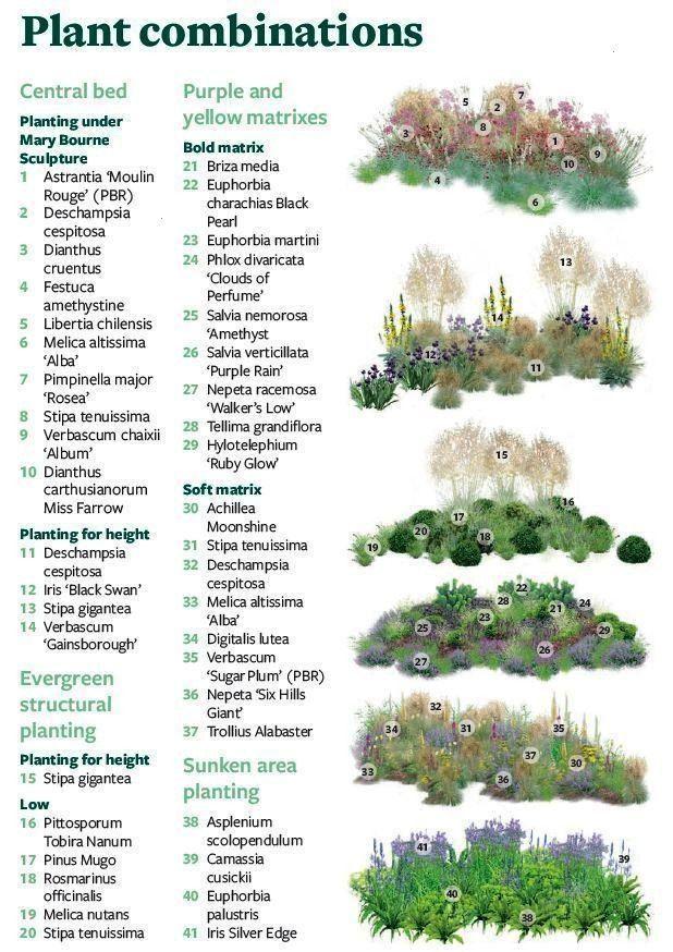 d3f85b0990fd131fb0fa16a2c9bc4c63 - The New Rhs Dictionary Of Gardening