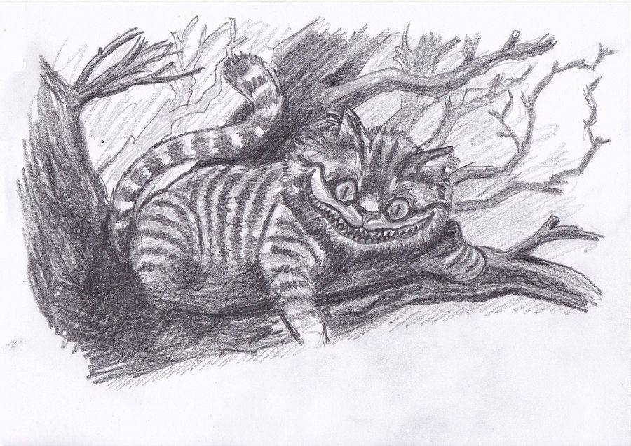 how to draw a caterpillar in pencil drawing cheshire cat 6777