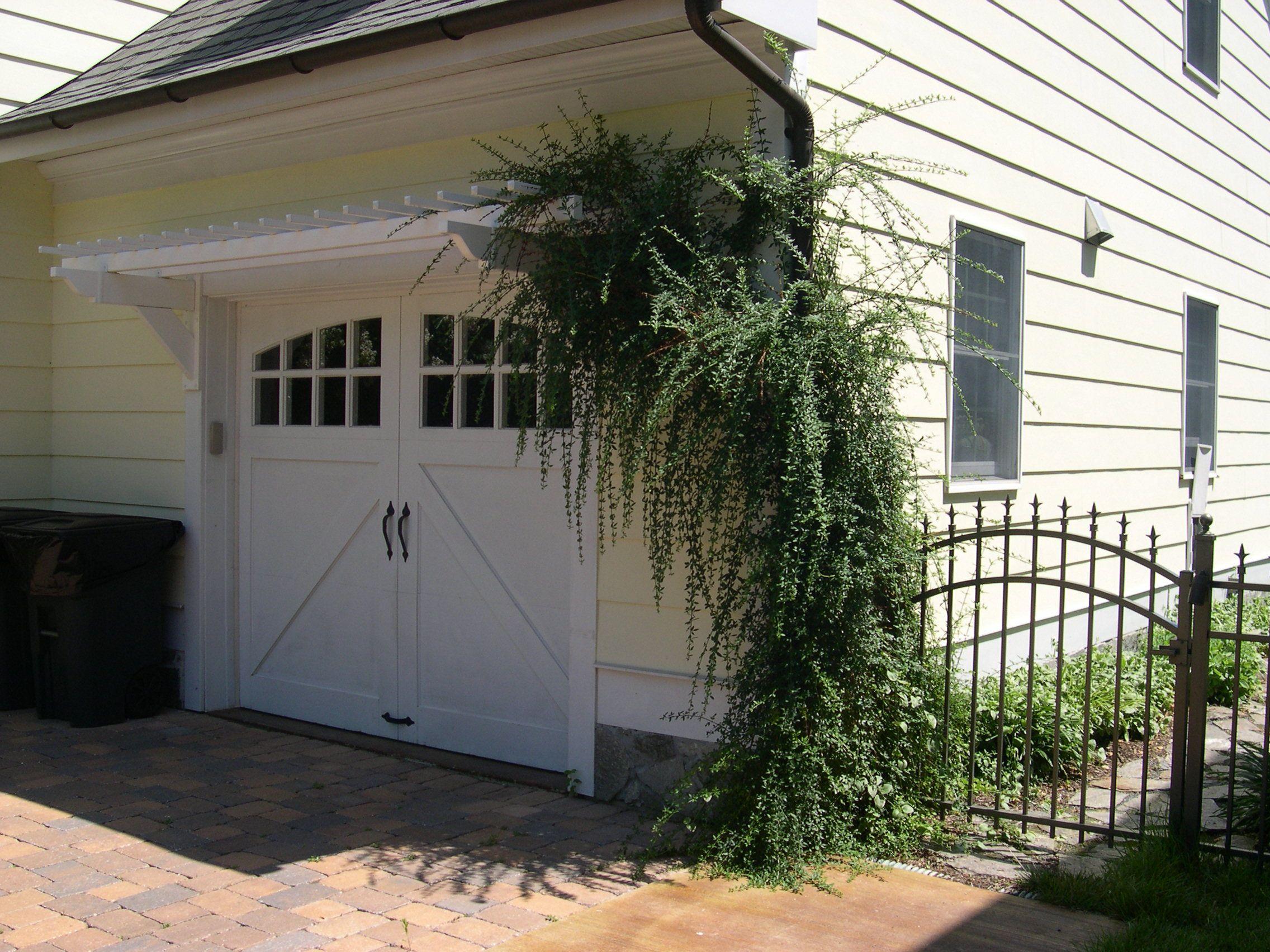 Trellis over garage door - Jasmine Vine On Eyebrow Pergola Above A Garage Door