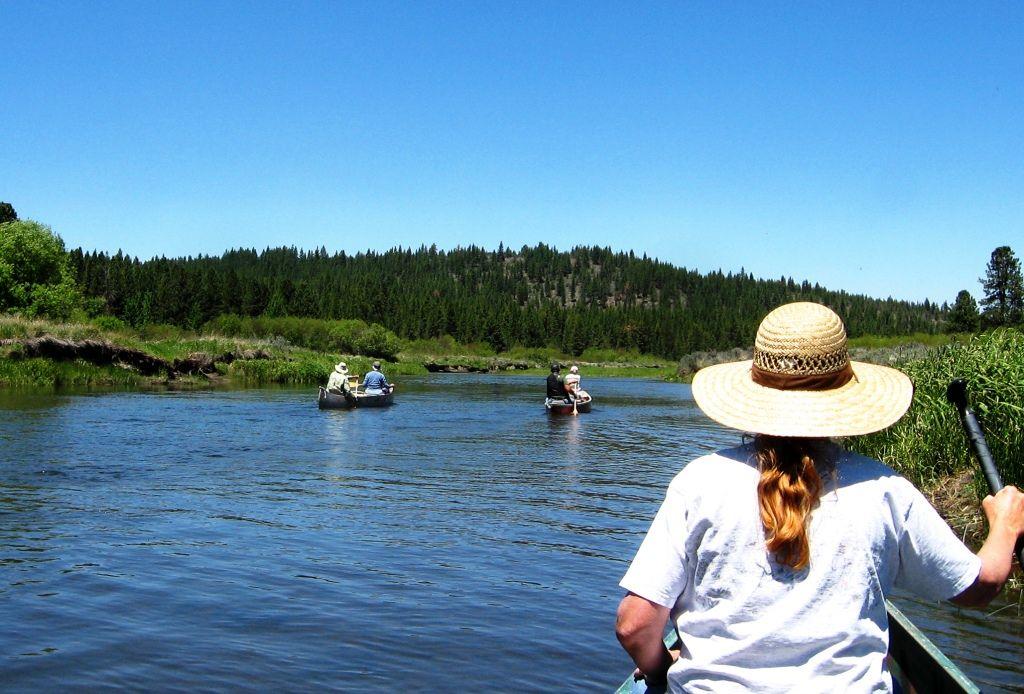 Canoe Trip On The Sprague River Oregon Saw Otter Muskrat Osprey