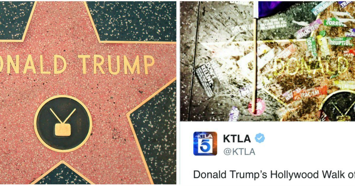 Resist Marchers In LA Decided To Redecorate Donald Trump's Hollywood Star - GOOD Magazine