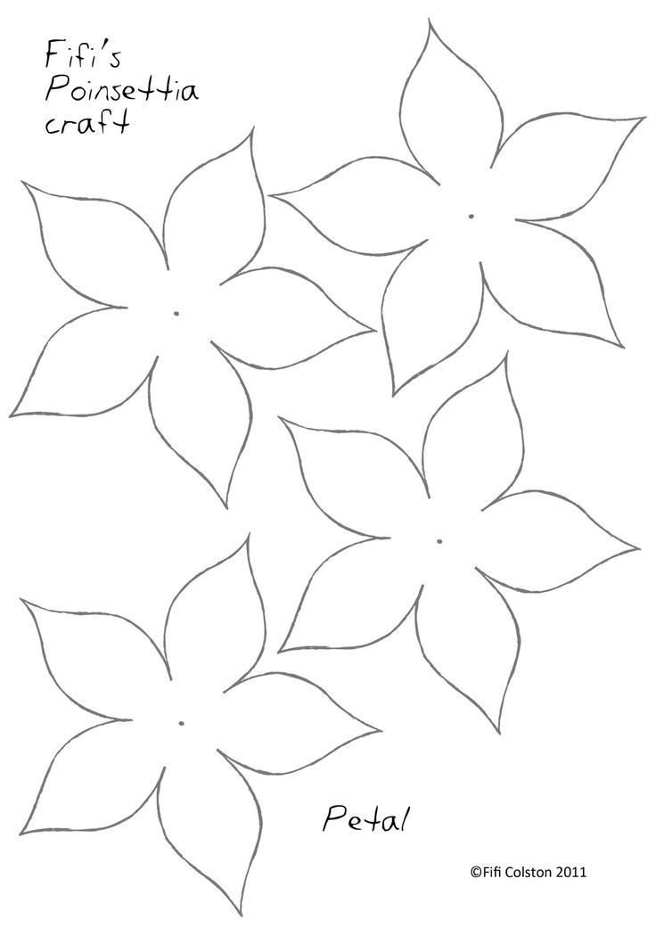 Paper Poinsettias Here they are- Pretty Poinsettia flowers as seen - white paper template