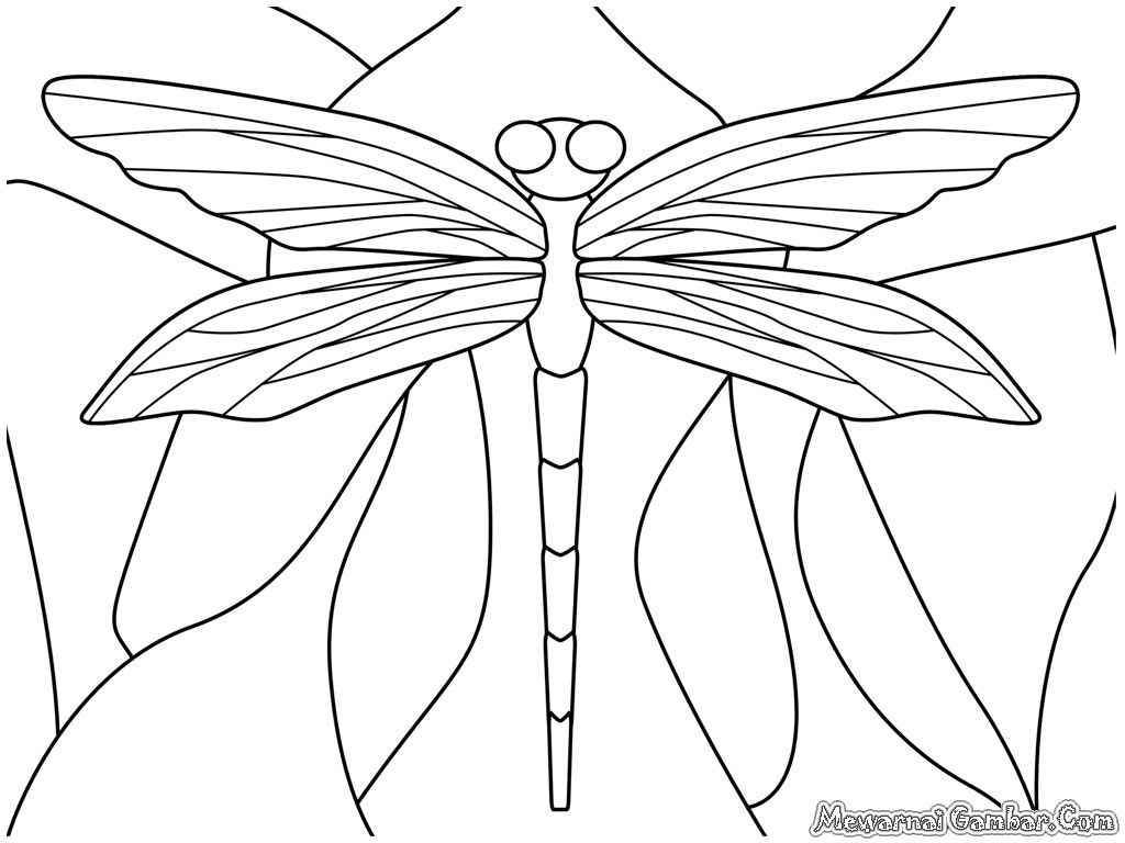 related dragonfly coloring pages item 3330 dragonfly coloring pages
