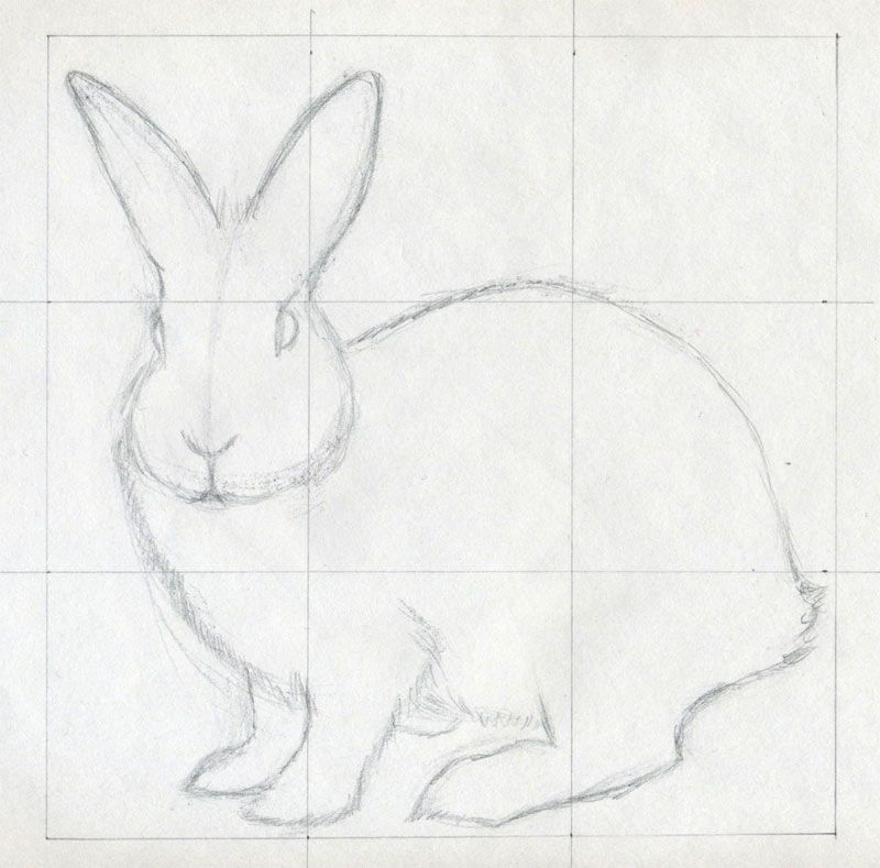 How to draw a rabbit kids stories pencil drawings how to draw