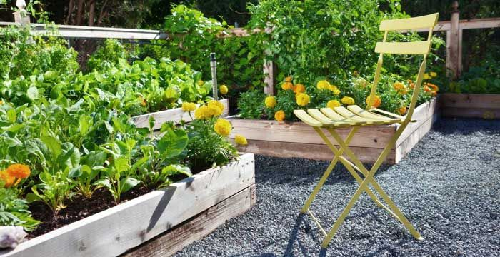 You can make raised beds or buy raised beds in a wide ...