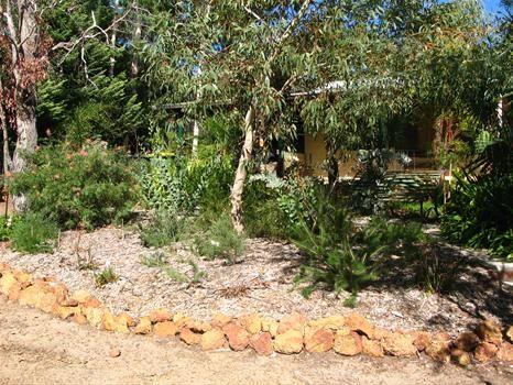 Small Native Garden Perth Google Search