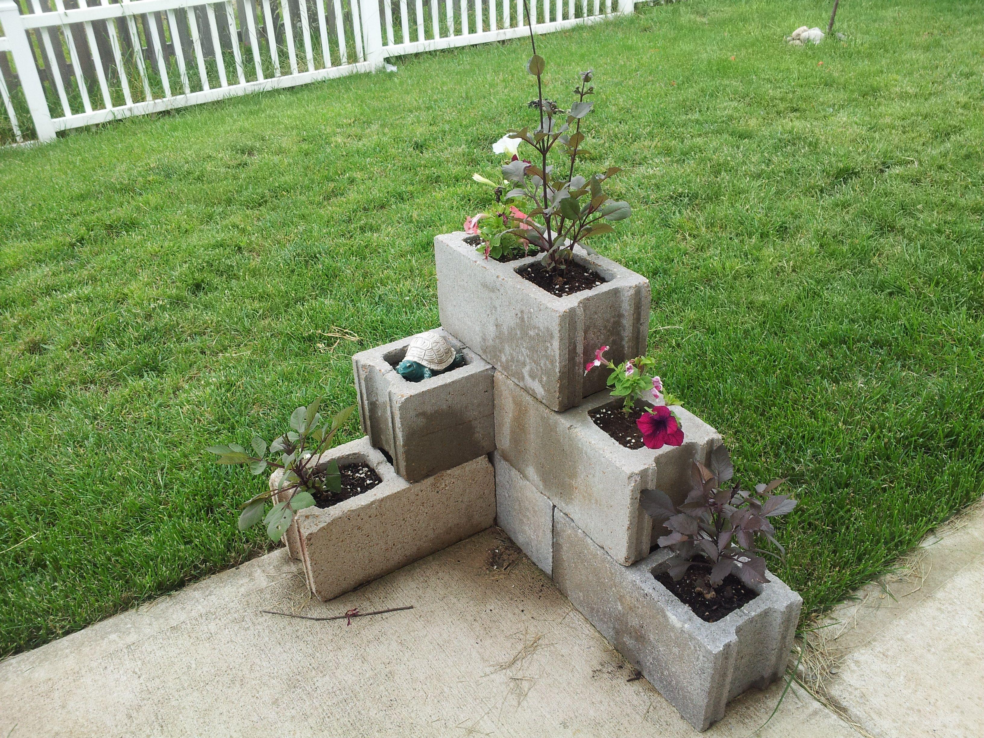 Cinder block garden   garden/yard   Pinterest   Cinder block garden