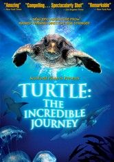 This is such an awesome film about the lifespan of a sea turtle. Great to watch with the kids.