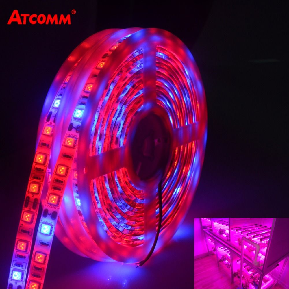 LED Phyto Lamp Strip Licht SMD 5050 5 Meters Volledige Spectrum ...