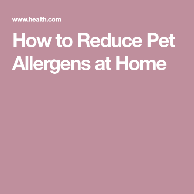 How To Reduce Pet Allergens At Home