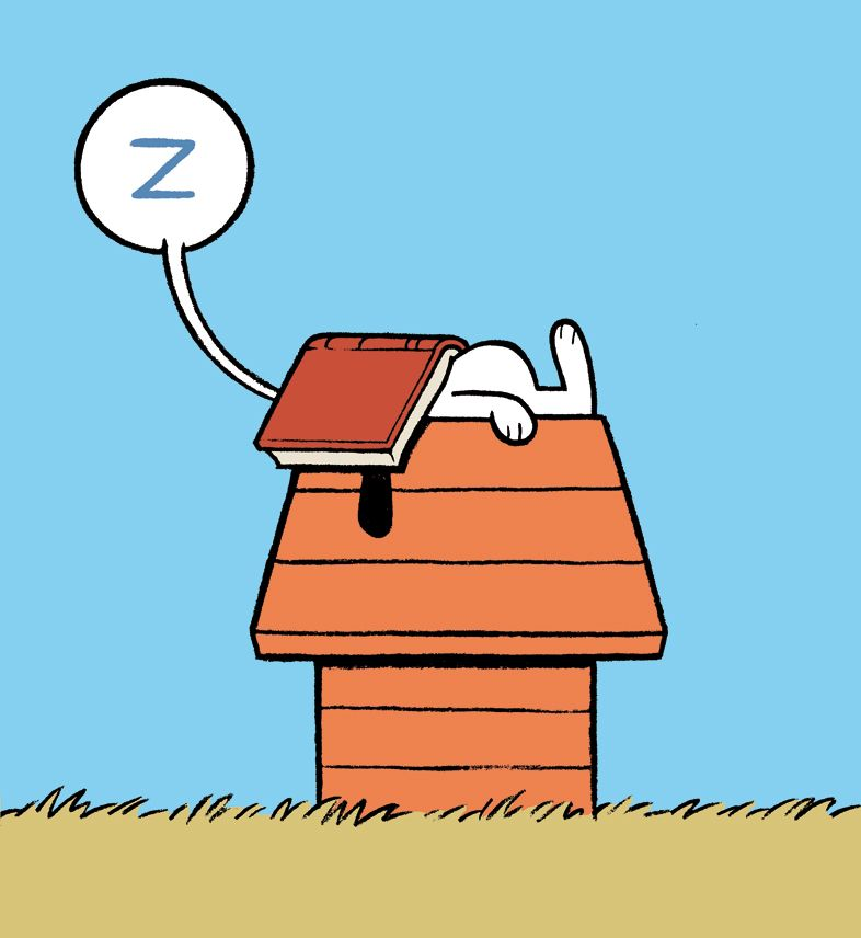 Image result for snoopy sleeping