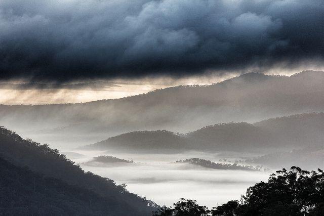 Phil WILEY :: Mt. Archer, Queensland, Australia