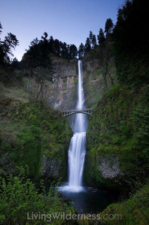 Multnomah Falls and Benson Bridge, Oregon