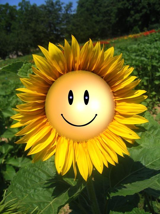 emoticon benessere – Ricerca Google