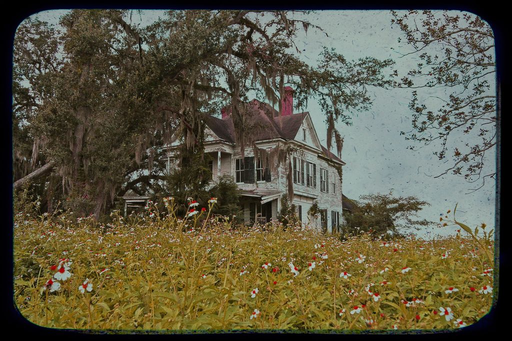 https://flic.kr/p/79XZ6z | Forgotten Soon | Ahhh.....a lovely abandoned farmhouse/mansion Amy Higgins shared with me while we were visiting Georgia.  Glorious outside and, IMO, even better inside.