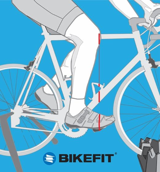 Learn How To Properly Fit A Road Bicycle Learn About How To