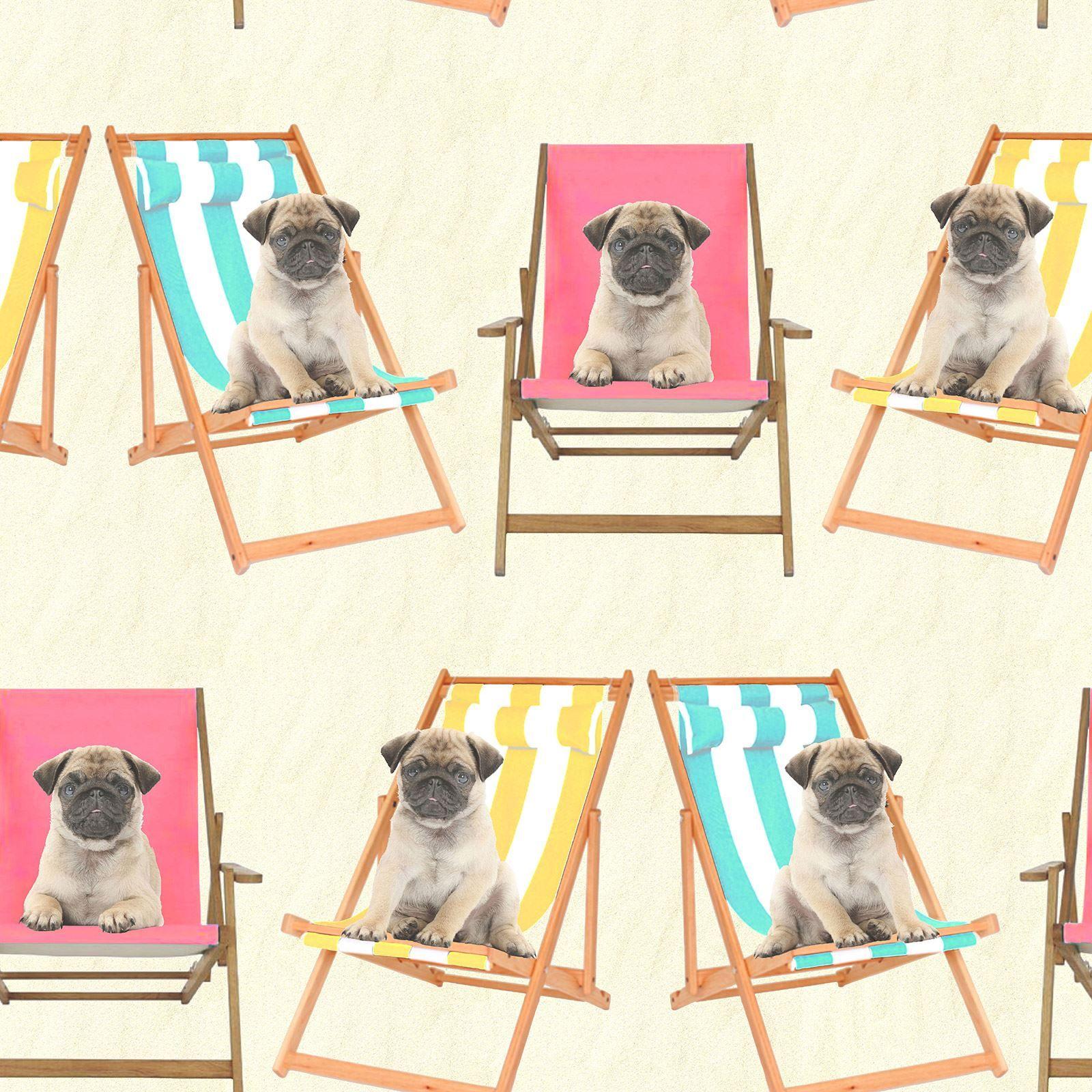 Dog Themed Wallpaper Animal Pug Puppy Frames Selfies Various Designs Available Dog Themed Dog Wallpaper Pug Dog