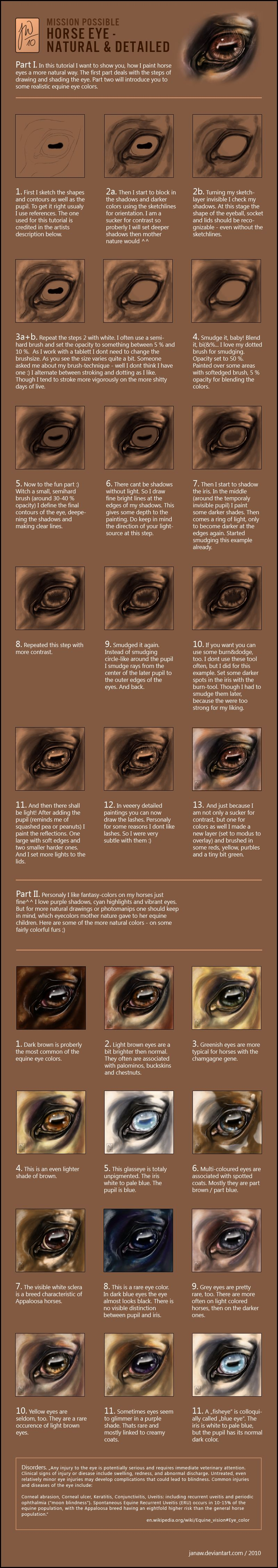Tut - Natural Horse Eyes by *JanaW - An introduction to my my way of ...
