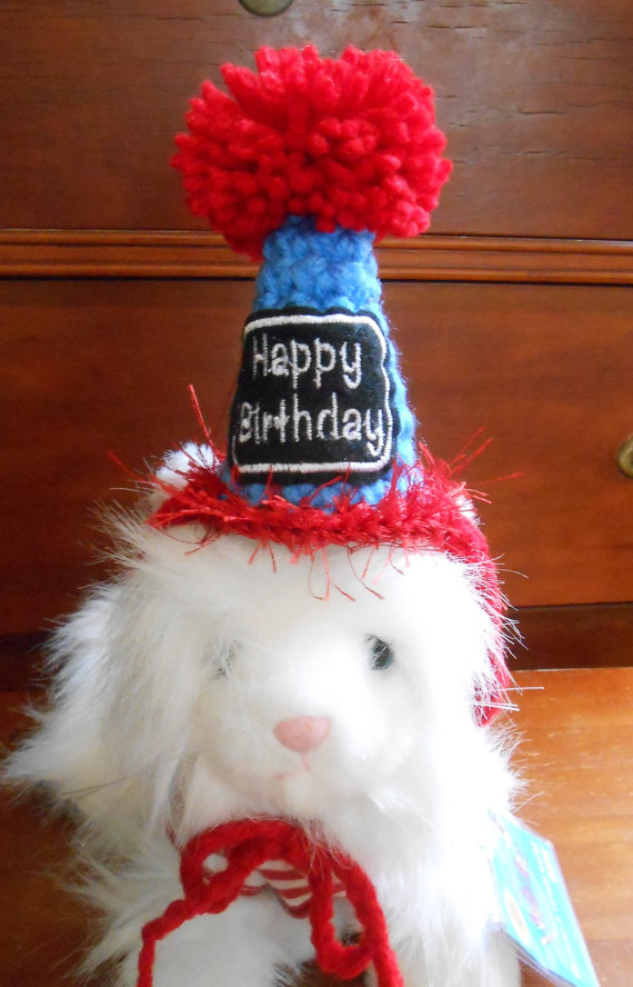 Crocheted Cat Birthday Party Hats XS Dog Hat Red And Blue Pet