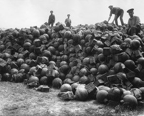 Men of the RAOC (Royal Army Ordnance Corps) on a supply dump of trench mortar ammunition (nicknamed toffee apples), at Acheux, northern France, during the First World War.