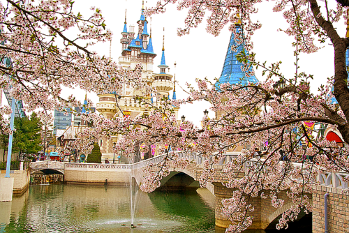 I want to go to Lotte World in Seoul, South Korea. It's the largest indoor theme park and shopping mall.