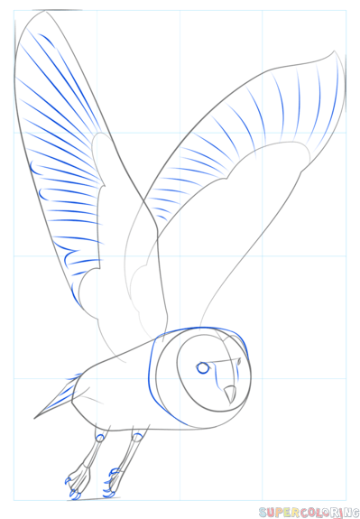 How to draw a barn owl | Step by step Drawing tutorials ...