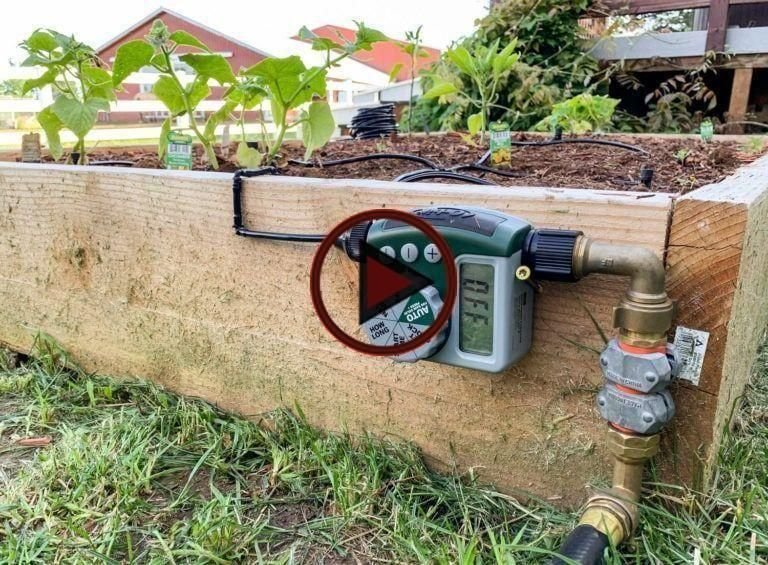 How To Install A Drip Irrigation System With Automatic Watering Irrigation System Drip Irrigation System Drip Watering System