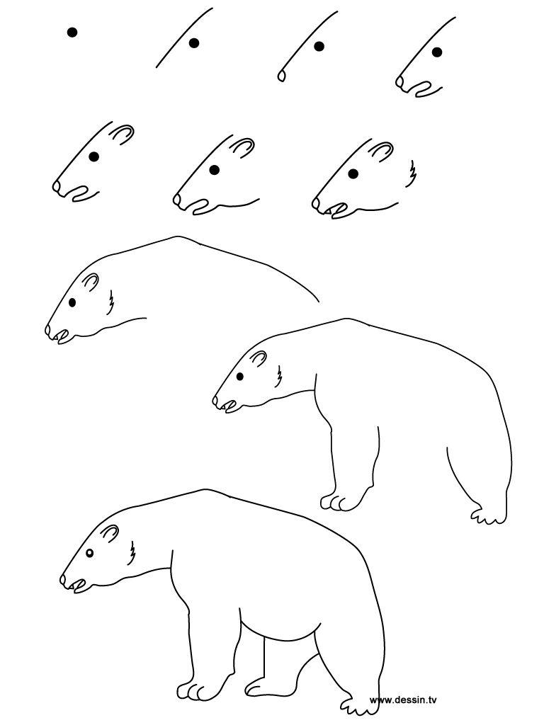 Bear Joey Is Trying To Draw Leer Tekenen Schets Ijsbeer
