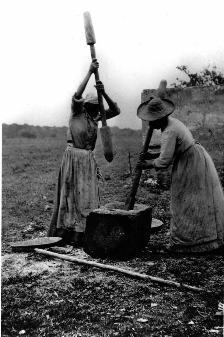 Two slave women hulling rice sapelo island georgia photographer two slave women hulling rice sapelo island georgia photographer unknown ca sciox Image collections