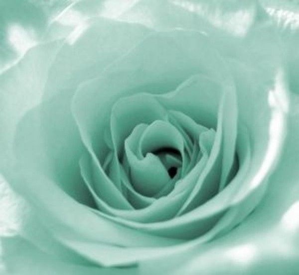 Pin By Robin Slusher On Shades Of Blue Mint Green Aesthetic Green Aesthetic Mint Aesthetic