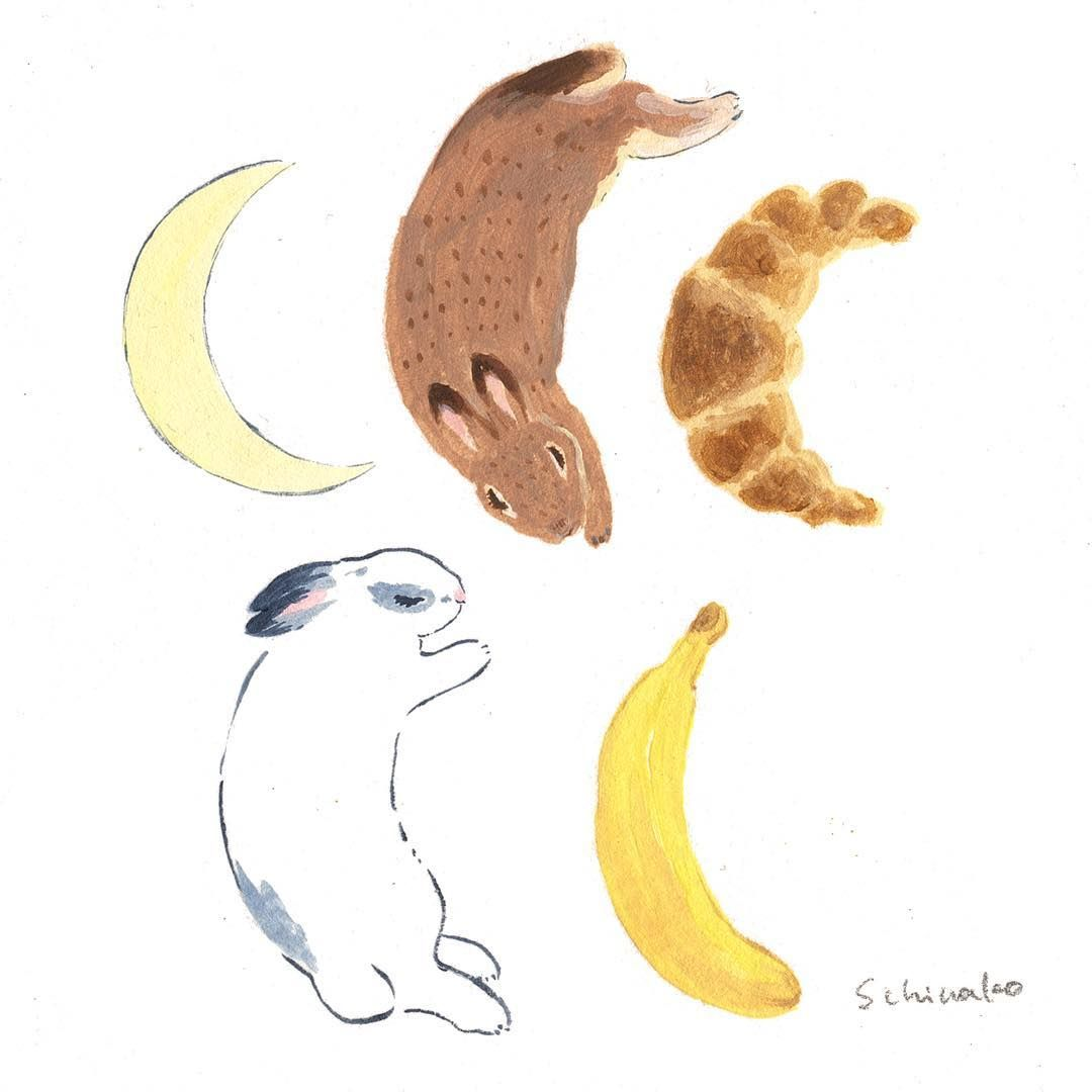 "2,360 curtidas, 66 comentários - 森山標子(しなこ)/Schinako (@schinako) no Instagram: ""day 362. Crescent I displayed similar things 似たものを並べてみました *…"""