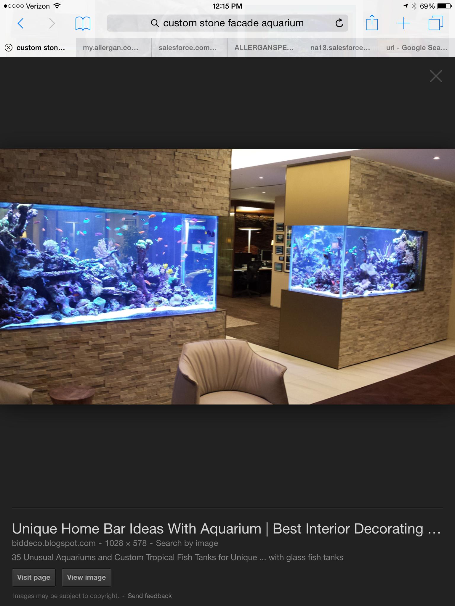 Home Aquarium Ideas The Aquarium Buyers Guide 30 Incredibly Awesome