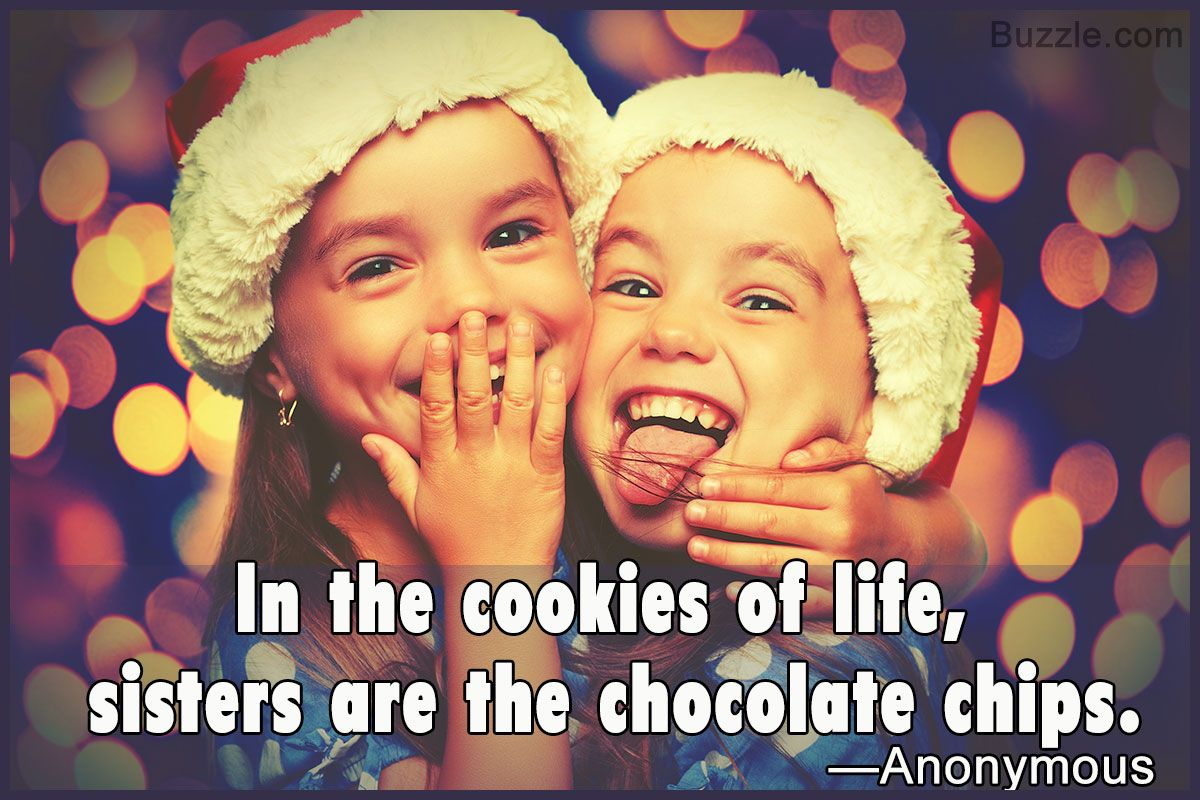Funny Quotes About Sisters Sister Quotes Funny Sister Quotes Funny Quotes