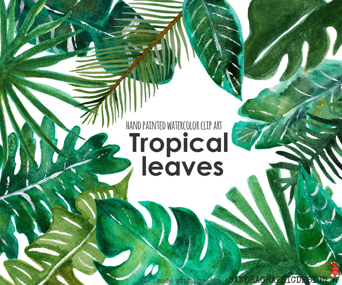 "Tropical clip art: ""TROPICAL LEAF clip art"" hand painted ..."