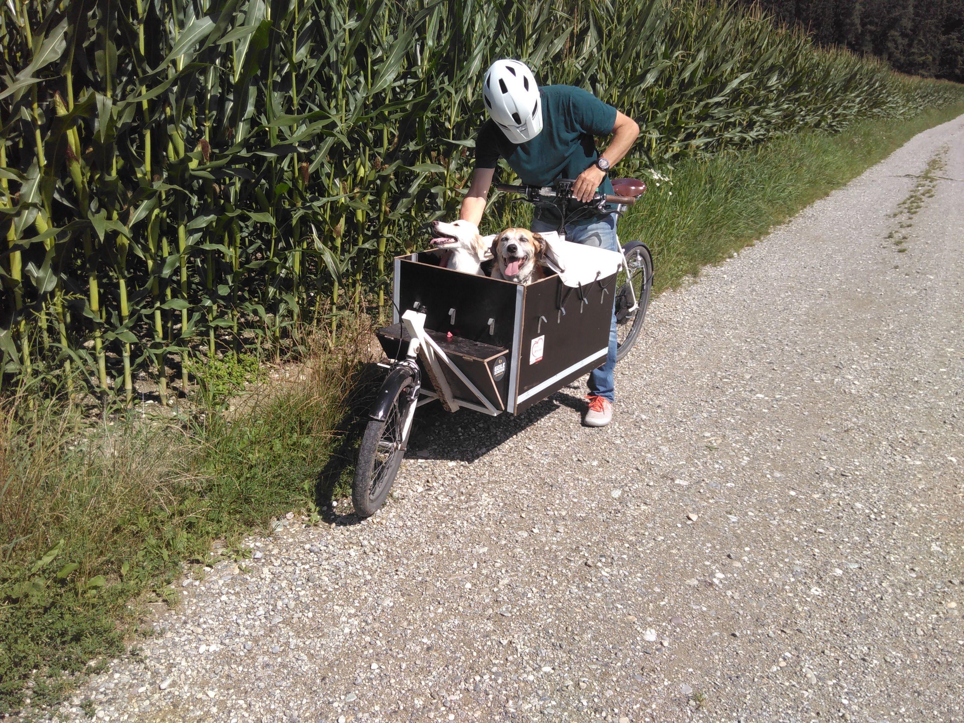 Cargobike - Upcycling