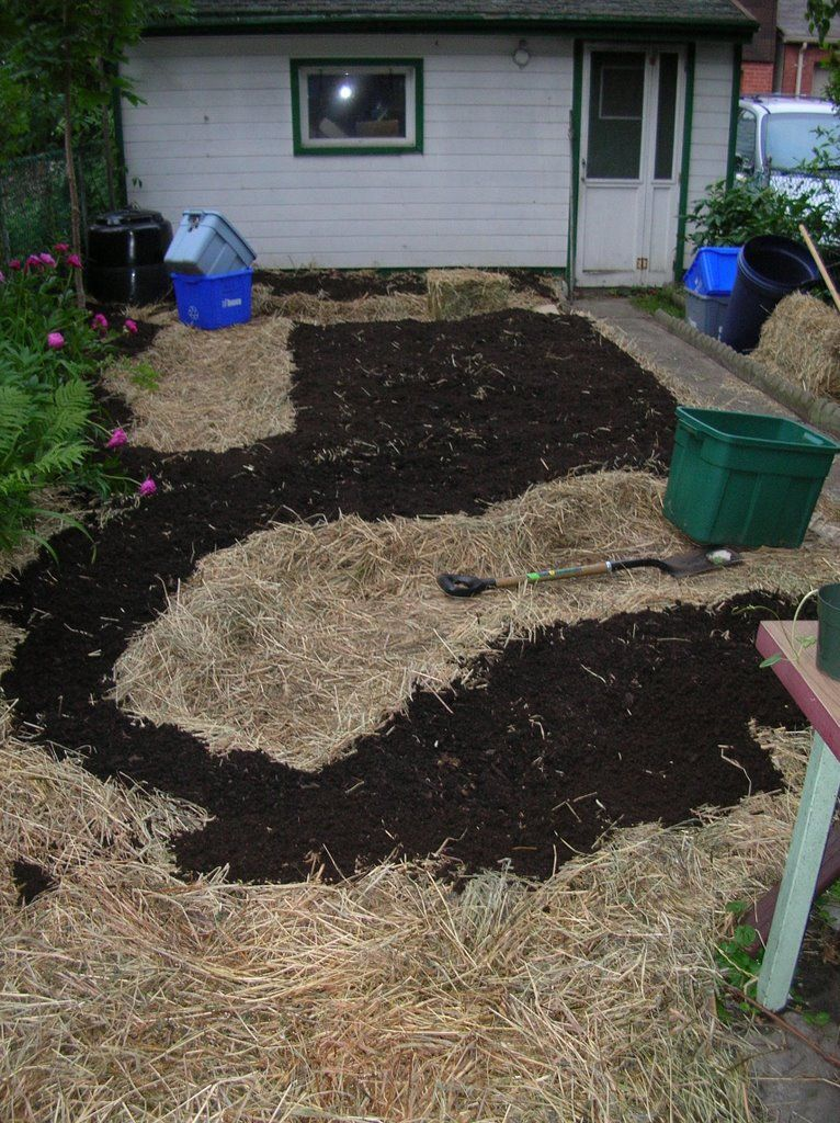 Permaculture Ideas for a small yard | Permaculture ...