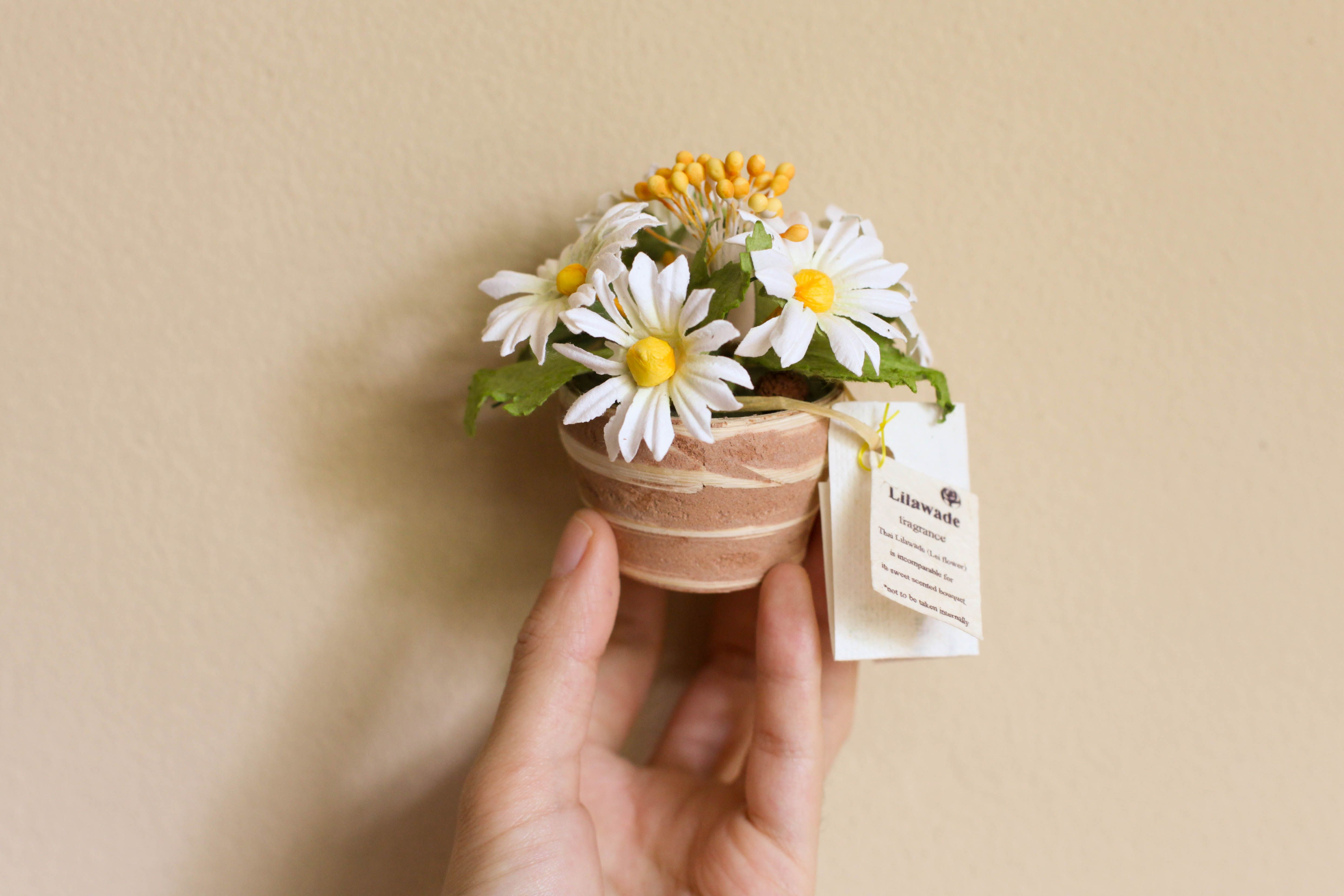 Classy Design Ideas Tiny Flower Pot Paper Flowers Mulberry Bamboo Byhands Pots Bulk Mini Crafts Favors Cakes In Miniaturas