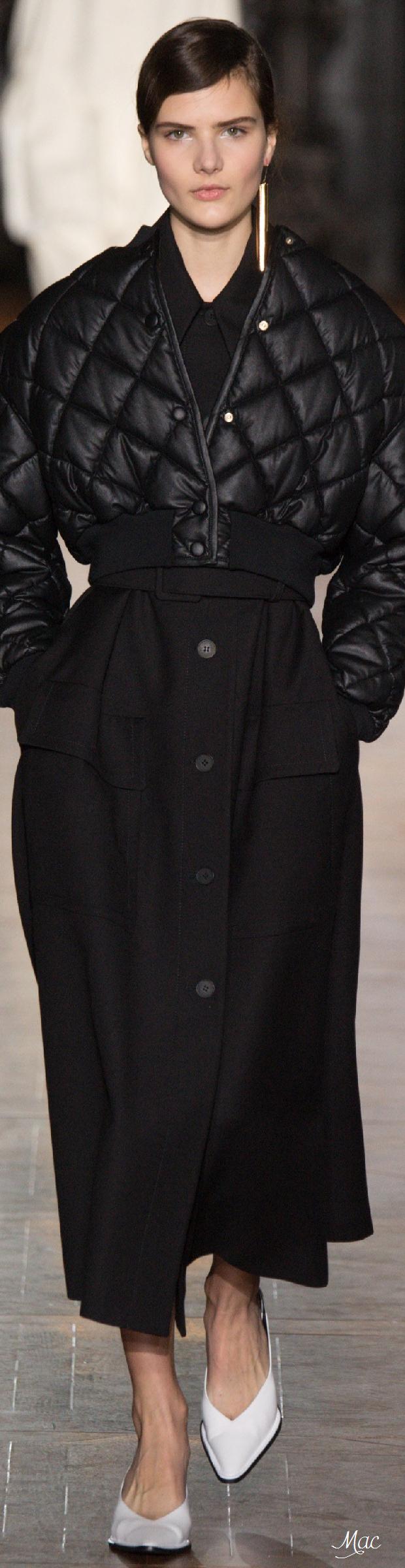 Fall 2016 Ready-to-Wear Stella McCartney